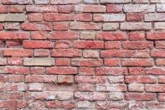 Textura tijolo Pode ser usado como um fundo Imagem de Stock
