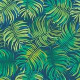 Textura tropical inconsútil del fondo del estampado de flores Fotos de archivo