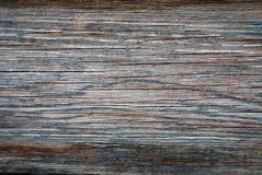Textura velha da árvore Fotos de Stock Royalty Free