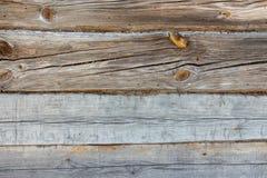 Textura velha da árvore imagem de stock royalty free