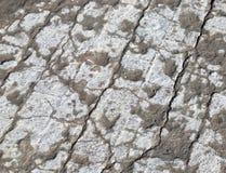 Textura velha da estrada Imagens de Stock Royalty Free