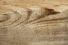 Textura velha da grão da madeira de pinho Imagem de Stock