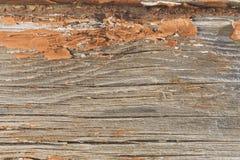 Textura velha da parede da casa da madeira Fotos de Stock