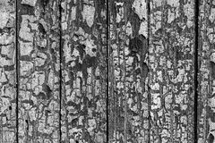 Textura velha da pintura fotos de stock