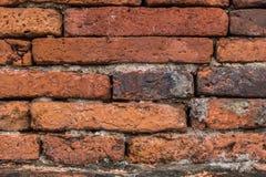 Textura velha do tijolo Imagens de Stock