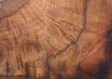 Textura velho de Nanmu da árvore Imagens de Stock Royalty Free