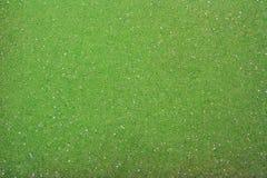 Textura verde Foto de Stock