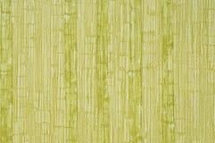 Textura verde Foto de Stock Royalty Free
