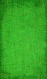 Textura verde de la lona con la frontera Imagen de archivo