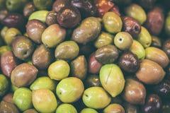 Textura verde oliva Foto de archivo libre de regalías