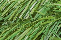 Textura verde para el fondo Foto de archivo libre de regalías