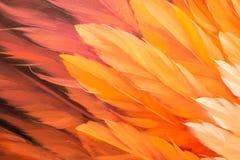 Textura vermelha e amarela da pintura a óleo da cor Imagem de Stock