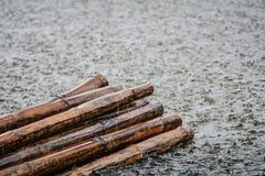 Textura y bambú del agua de lluvia Fotos de archivo libres de regalías