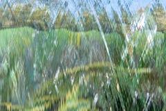 Textura y fondo naturales de la caída del agua del primer Fotos de archivo