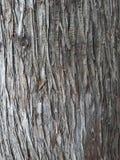 Textura y fondo superficiales para un sitio o las salvapantallas fotos de archivo