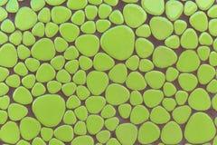 Textural ścienna mozaiki zieleń, kolor abstrakci tło Zdjęcie Stock