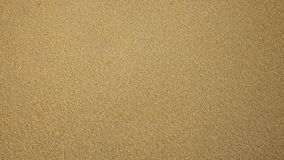 Textural background of small wooden sawdust of yellow color. royalty free stock photos