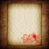 Textural Flower old paper Stock Image