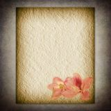 Textural flower old paper Stock Photos