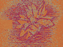Textural flower with a plurality  lines  brown background Stock Photography