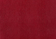 Textural sample of fabric Stock Image