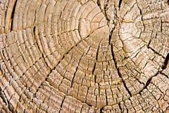 Texturas Foto de archivo libre de regalías