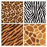 Texturas animais da pele Foto de Stock Royalty Free
