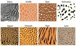 Texturas animales de la piel Fotografía de archivo