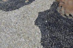 Texturas brancas e pedras pretas foto de stock