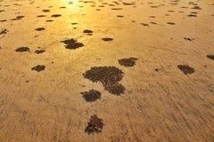 Texturas da areia na praia imagens de stock royalty free