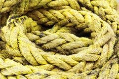 Texturas da corda da pesca fotografia de stock