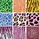 Texturas da pele animal Imagens de Stock