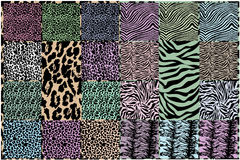 Texturas da pele animal do vetor Fotos de Stock