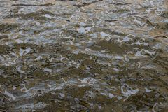 Texturas de Brown fotografia de stock royalty free