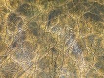 Texturas de couro imagens de stock