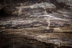 Texturas de madeira velhas Fotos de Stock