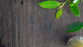 Texturas de madera fotos de archivo