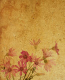 Texturas de papel da flor. Fotografia de Stock Royalty Free