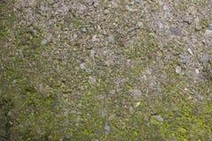 Texturas del hormigón Foto de archivo