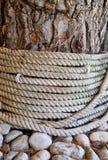 Texturas diferentes; Ferida da corda em torno da árvore com casca áspera fotografia de stock royalty free