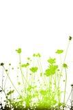 Texturas e fundos abstratos da flor Fotografia de Stock