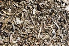 Texturas e fundos abstratos: Vegetação rasteira/palha de canteiro da casca Fotografia de Stock Royalty Free