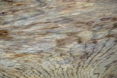 Texturas e fundos de madeira diferentes CXI fotos de stock