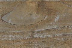 Texturas e natureza Imagens de Stock Royalty Free