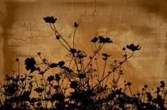 Texturas florais Fotografia de Stock