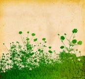 Texturas florais Fotos de Stock