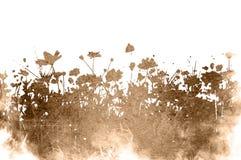 Texturas florais Imagens de Stock