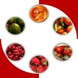 Texturas frutados dentro de seis círculos fotos de stock royalty free