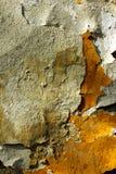 Texturas na parede Imagens de Stock