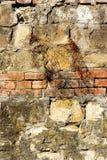 Texturas na parede Fotos de Stock